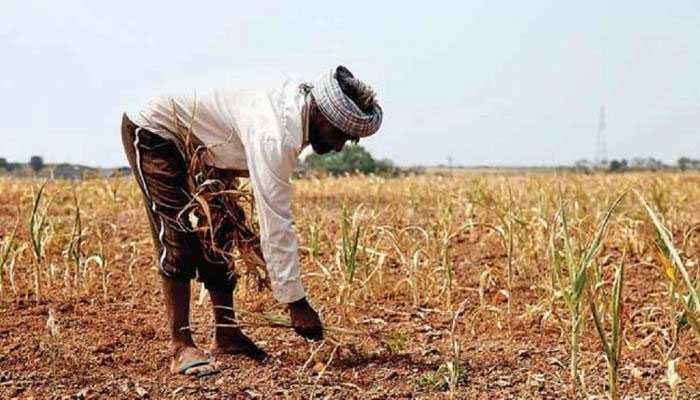 शेतकऱ्यांना पेन्शन