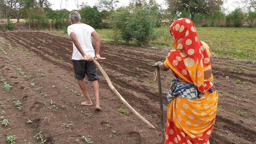 बैलाच्या जागी स्वत:ला जुंपले; शेतकऱ्याला शिवसेनेकडून मदत