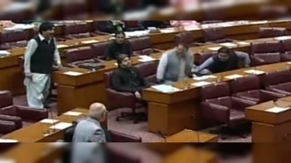 मंत्रीमहोदयांना कुत्र्याची उपमा दिल्यामुळे पाकिस्तानच्या संसदेत गोंधळ