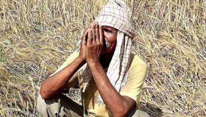 मोठी बातमी: राज्यपालांकडून शेतकऱ्यांना हेक्टरी ८००० रुपयांची मदत जाहीर
