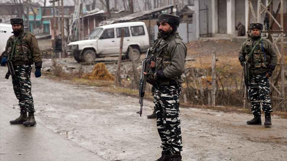 जम्मू-काश्मीरच्या त्रालमध्ये सुरक्षा दलाने दोन दहशतवाद्यांना केले ठार