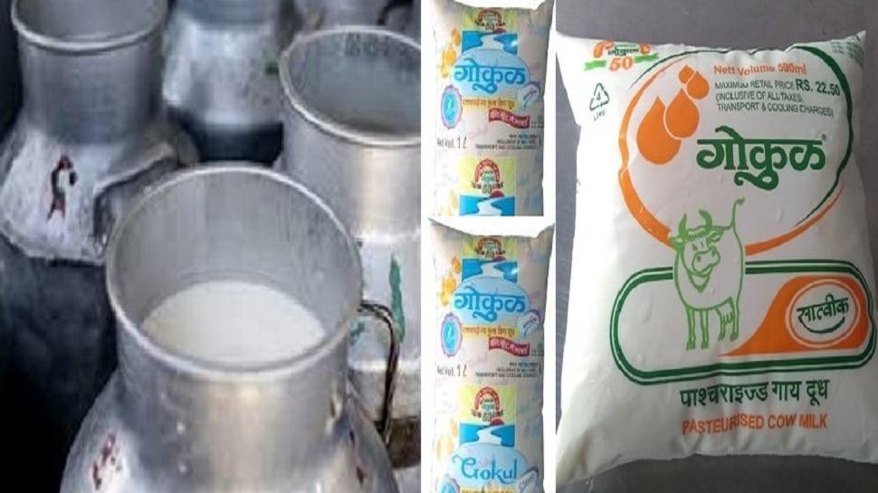 दूध उत्पादक शेतकऱ्यांसाठी गुडन्यूज, गोकुळ दूध दरात वाढ