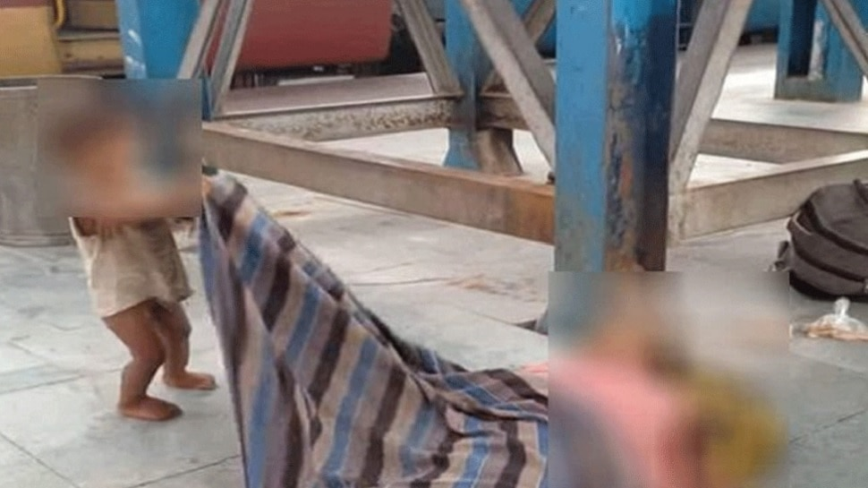 आईच्या मृतदेहाशी खेळणाऱ्या चिमुकल्याचा व्हिडिओ व्हायरल; शाहरुखने उचचलं हे पाऊल