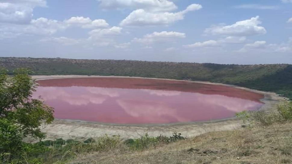 आश्चर्यकारक! लोणार सरोवराचे पाणी गुलाबी झाले !
