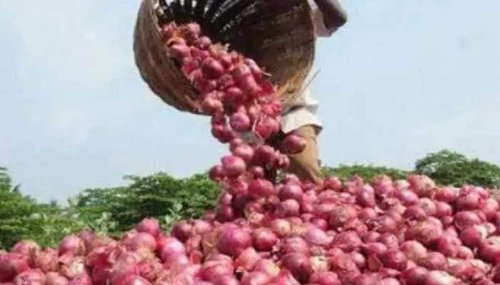 कांदा व्यापाऱ्यांच्या आडमुठे धोरणामुळे शेतकरी अडचणीत