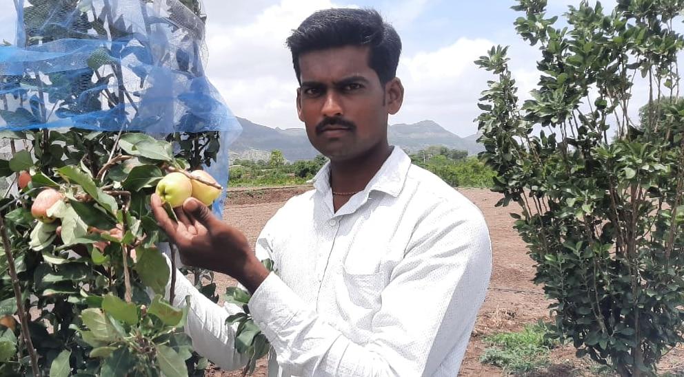 Farmer success story : डाळींबाच्या माहेरघरात फुलली सफरचंदाची बाग