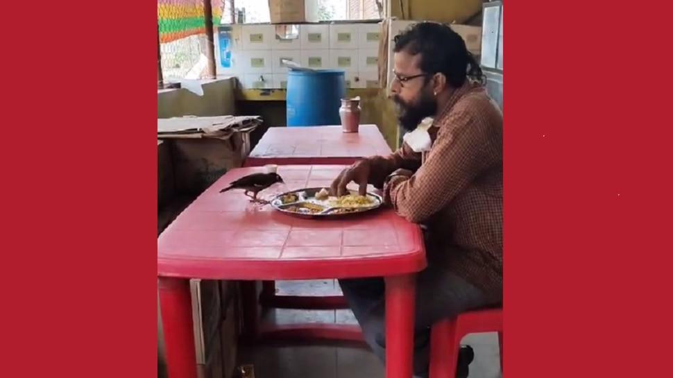 'दाने दाने पे लिखा है खाने वाले का नाम' ... मनहेलावून टाकणारा व्हिडिओ