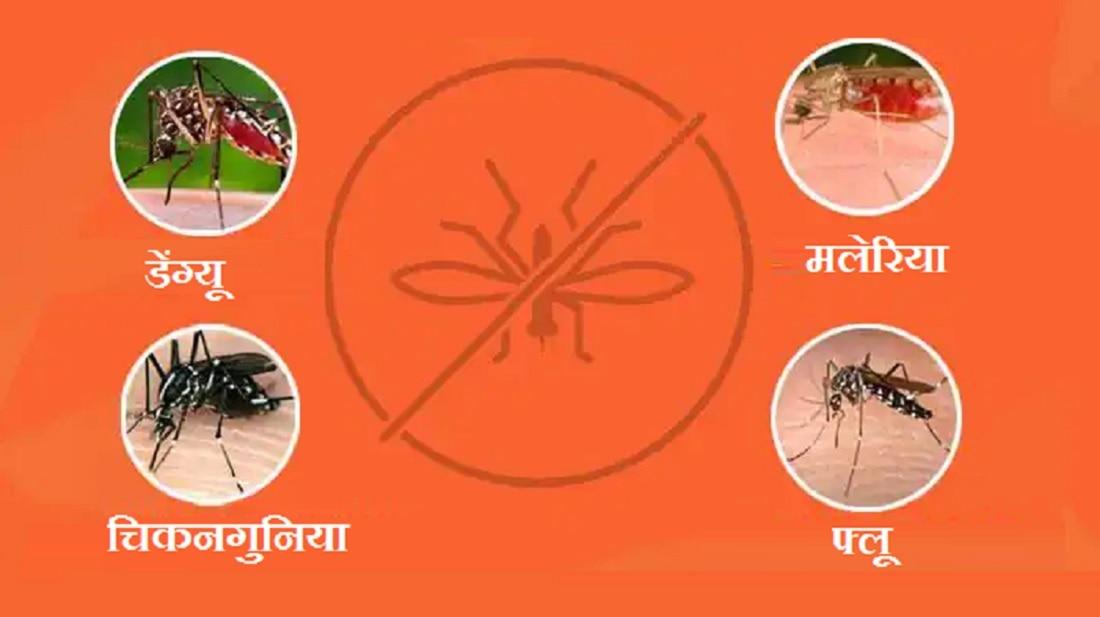 पावसाळ्यात डेंग्यु, मलेरिया, चिकनगुनियापासून दूर राहण्यासाठी या 5 गोष्टी करा