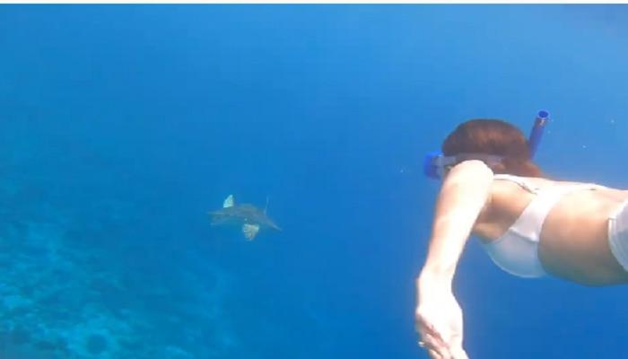 Ananya Panday च्या सुंदर व्हिडिओचा नजराणा, पोस्ट केला Underwater VIDEO