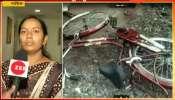 Nashik Eight Year Old Boy Sarthak Kale Injured And Hospitalised For Cycle Brake Moved In Eyes And Skull