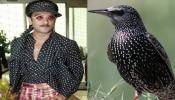रणवीर सिंहची ड्रेसिंग स्टाईल या पक्ष्यांशी मिळती जुळती. हुबेहुब फोटो पाहूण तुम्ही देखील व्हाल हैराण