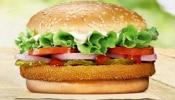फुकट बर्गर न दिल्याने पाकिस्तानी पोलिसांनी हॉटेलच्या कर्मचाऱ्यांना घेतलं ताब्यात