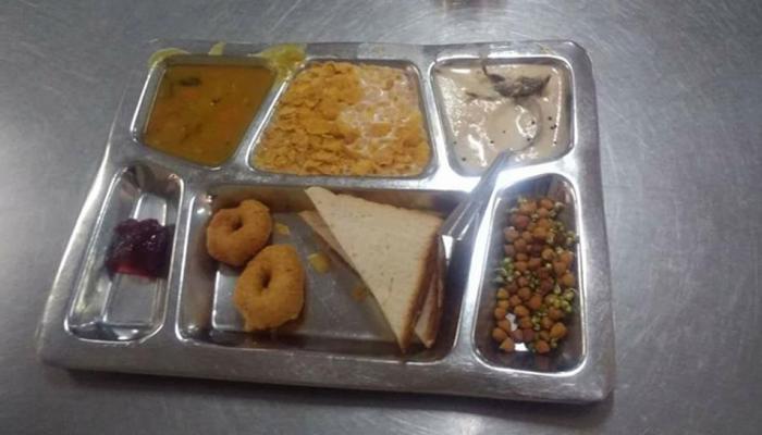 दिल्ली आयआयटीच्या भोजनात आढळला मृत उंदीर