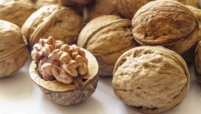 मधुमेहींना नियमित अक्रोड खाण्याचा होतो एक मोठा फायदा