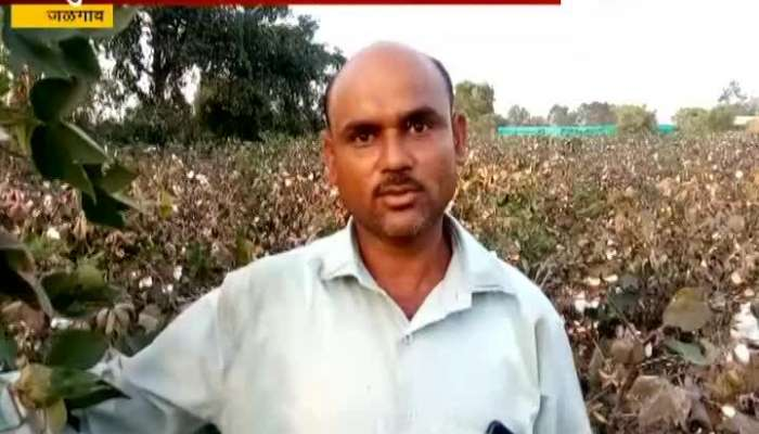 Jalgaon Farmer Prahlad Patil Success Story For Farming In Drought