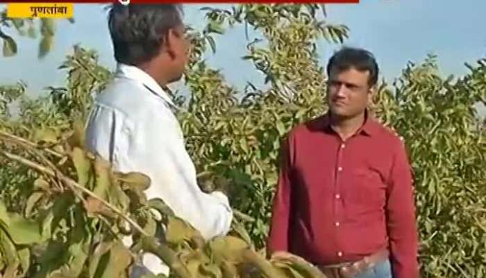 Ground Report On Puntamba Farmers About Loan Waive From Govt