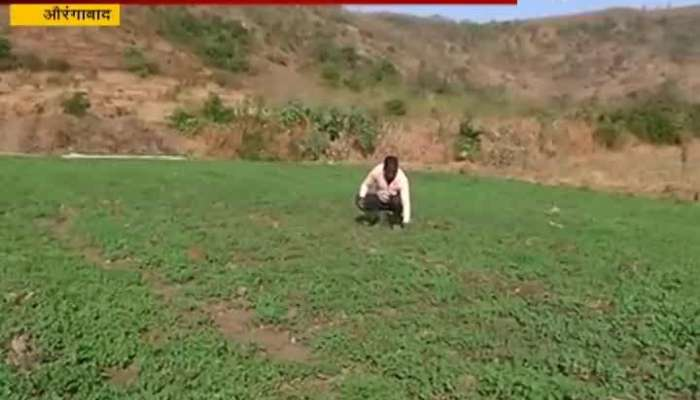 Aurangabad Farmer Pandit Wagh Use Govt Galyukya Shivar Galyukta Dharan For His Farming Benefit