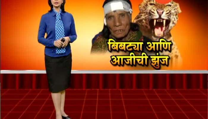 Pune Ground Report On Leopord Enter In City