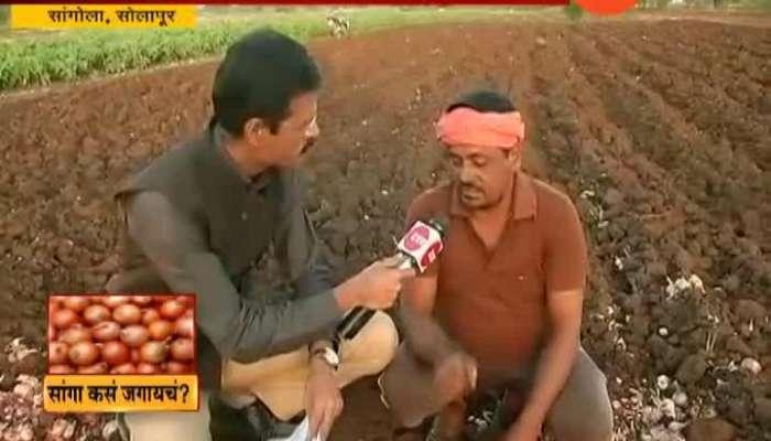 Solapur Sangola Farmers Not Getting Onion Price
