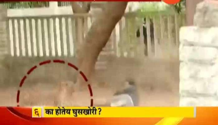 Thane People Under Fear As Leapord Entered Civil Area In Morning