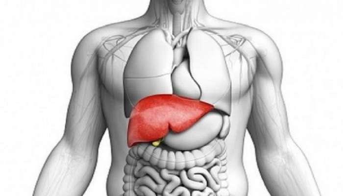 World Liver Day: निरोगी यकृतासाठी आहारात करा या पदार्थांचा समावेश