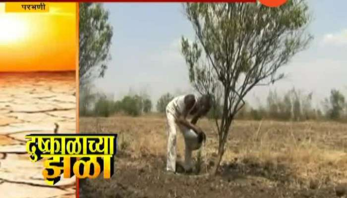 Parbhani Farmers Struggle To Save Farm From Heat As Scarcity Of Water In Drought Situation