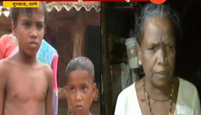 Thane Murbad Brave Grand Mother Save Grandsons From Leopard Attack