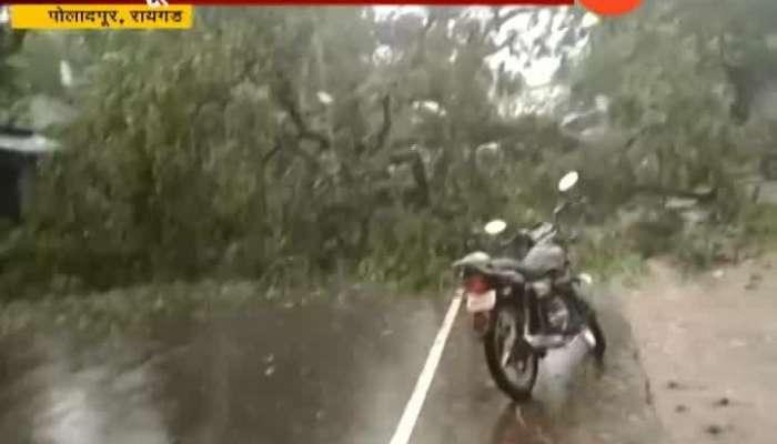 Raigad Poladpur Big Tree Collapse At Mumbai Goa Highway Route Closed For Traffic