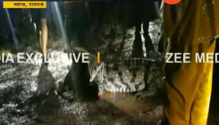 Raigad Mahad Two Crocodiles In Human Habitate