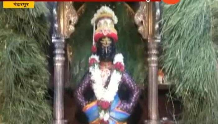 Pandharpur Vithal Rukhmani Temple Decorated With Durva