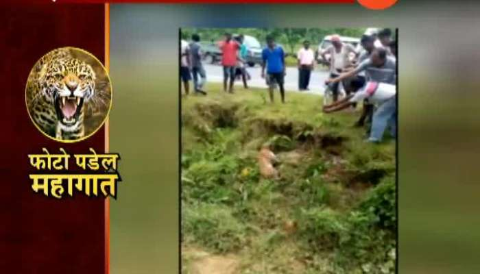 West Bengal | Alipur | Selfie With Wild Animals Could Cause Life