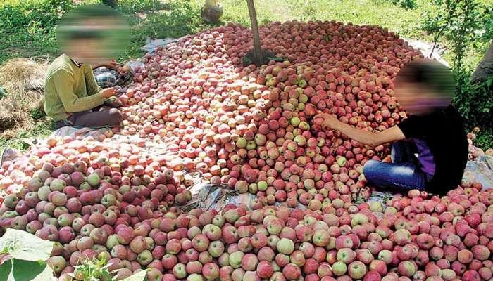 दहशतवाद्यांच्या टार्गेटवर सफरचंद विक्रेते, राजस्थानी ट्रकचालकाची हत्या