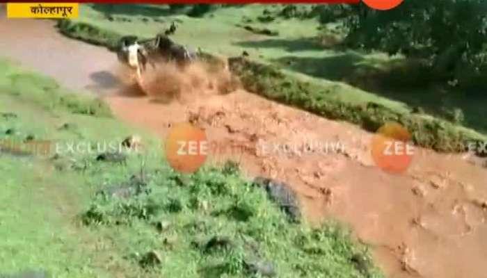 Kolhapur Chikhali Gutta Race