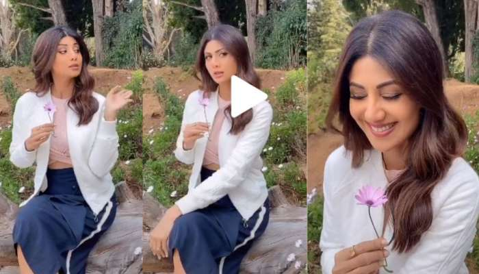 पाहा मराठी मालिकेच्या शीर्षकगीतावर शिल्पा शेट्टीचा TikTok व्हिडिओ