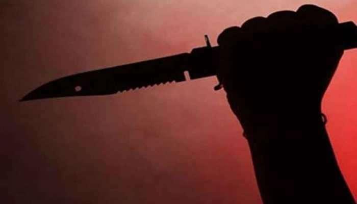 मुलगी पळून गेल्याने वडील आणि भावाचा प्रियकराच्या कुटुंबावर हल्ला