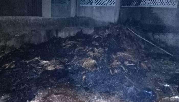 आगीत होरपळून दोन चिमुकल्या भावंडाचा मृत्यू