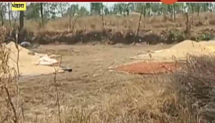 BHANDARA BIGGEST LOCUSTATTACK SINCE LAST 25 YEARS