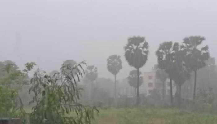 पालघर जिल्ह्यात जोरदार पाऊस, नवी मुंबईतही पाऊस