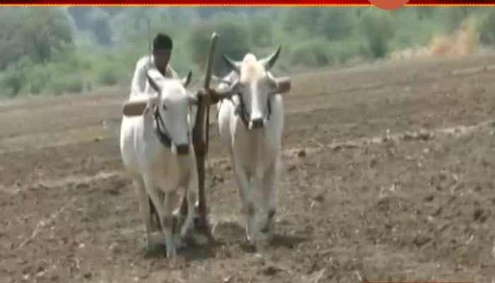Chandrapur Farmers In Preparation For The New Season