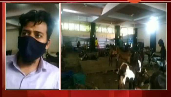 Mumbai Goat Business Owners On Sale Of Goats For Bakri Eid