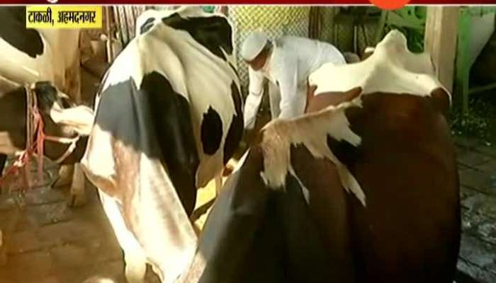 Ahmednagar,Takli Milk Farmer Khandu Vagchaure Reaction On Milk Agitation