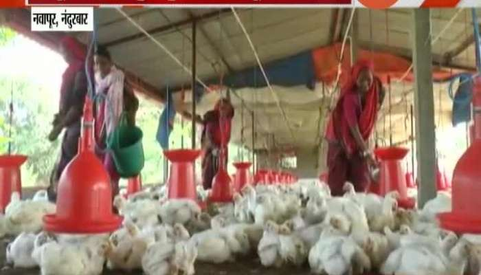 Nandurbar Womens Came Together And Started Poultry Farm