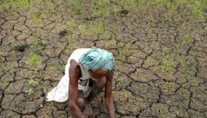 एका दिवसाला किती शेतकऱ्यांची आत्महत्या?