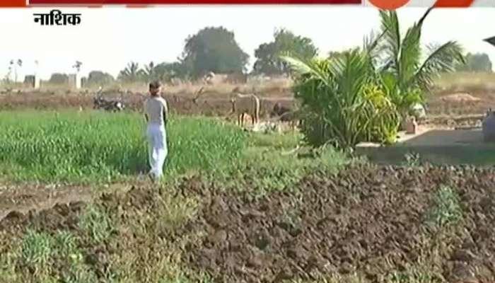 Nashik Onion Farmers Loss Due To Unconditional Rainy Season