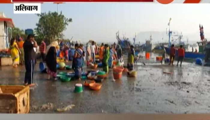 Alibag Fish To Get Expensive For Common People