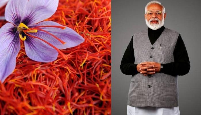 पंतप्रधान मोदींकडून काश्मीरच्या केसरचे कौतुक, जाणून घ्या काय आहेत फायदे