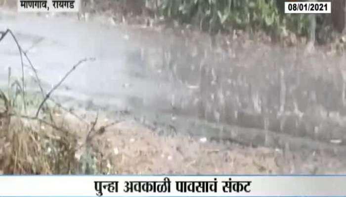 Raigad,Mangaon Uncertain Rain Farmers Suffer Loss