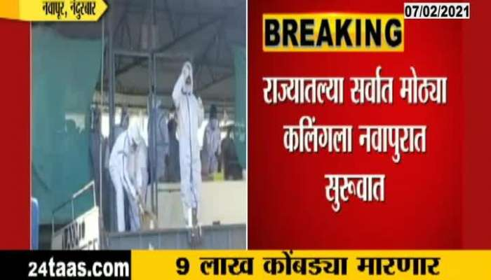 Navapur Nandurbar kalling of hens started