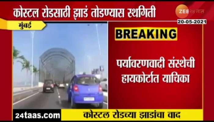 Bombay High Court Order Mumbai Mahapalika On Cutting Trees For Costal Road