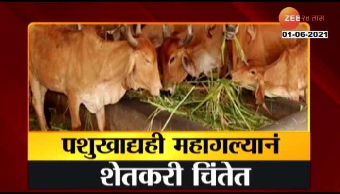 sangli lockdown effect on animal a rates
